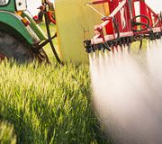 Pesticides agricoles Les ventes en forte hausse
