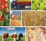 Stratégie alimentaire  La Commission renverse la table !
